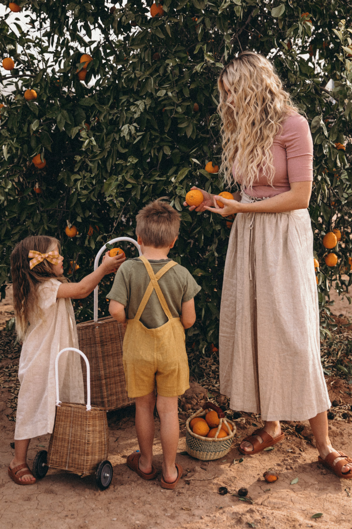 96dbf387e71 One of our favorite activities is picking and juicing oranges! As you have  probably noticed by now. Fresh OJ is a staple of my childhood and reminds  me so ...